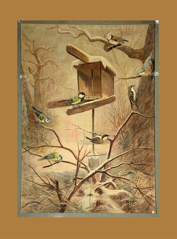- Vögel am Futterhäuschen.
